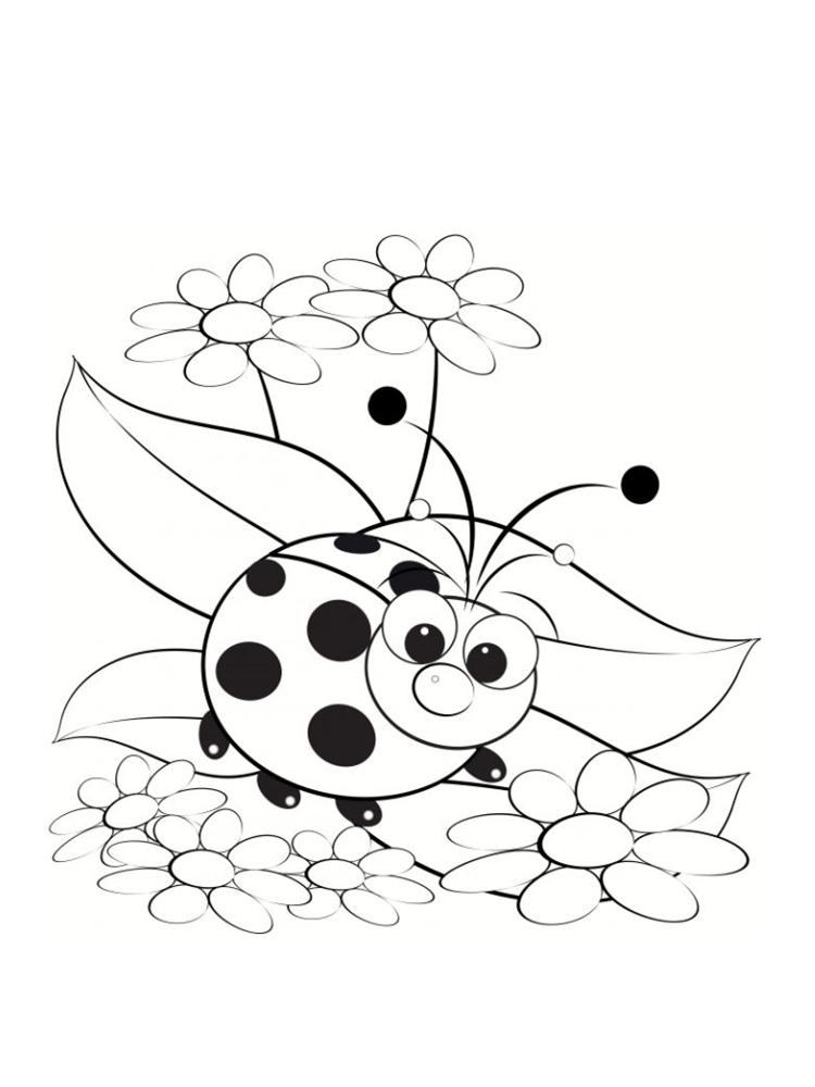 Coloriage Coccinelle Et Papillon.Coloriage Coccinelle Sans Points
