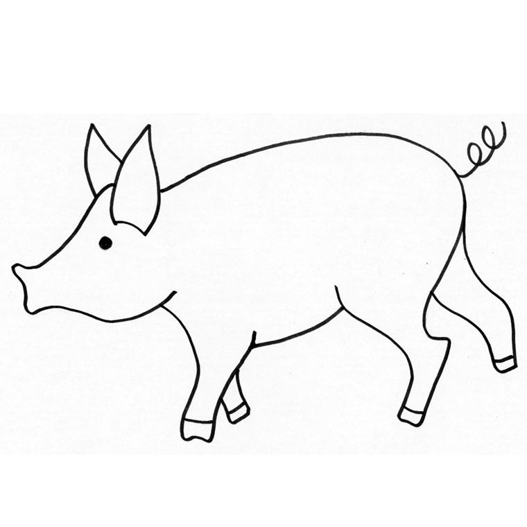 Coloriage cochon d 39 inde gratuit - Cochon a dessiner ...