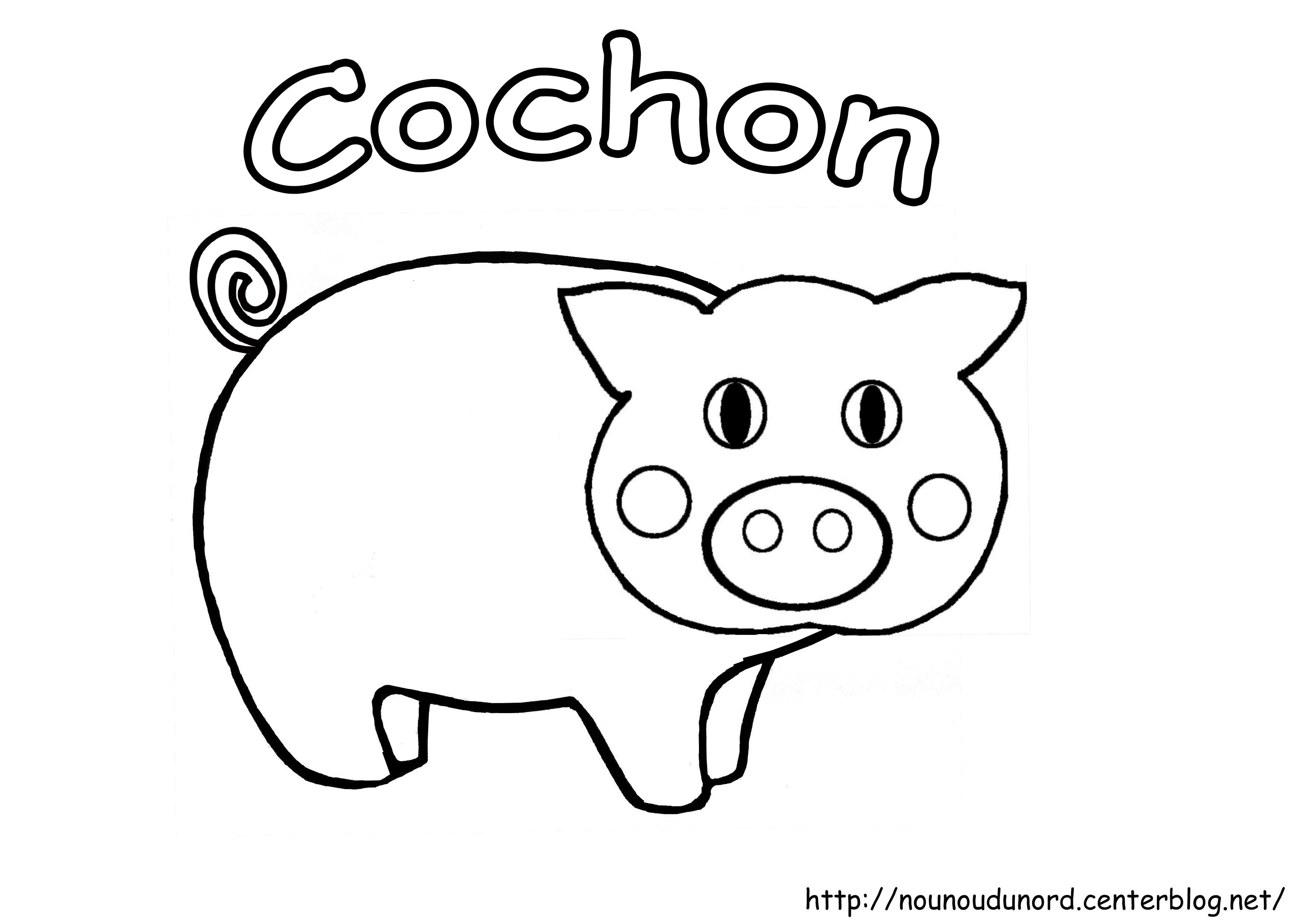 coloriage le cochon