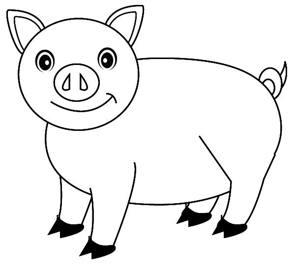 dessin tirelire cochon