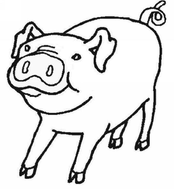 Coloriage dessiner cochon d 39 inde - Dessiner une oie ...