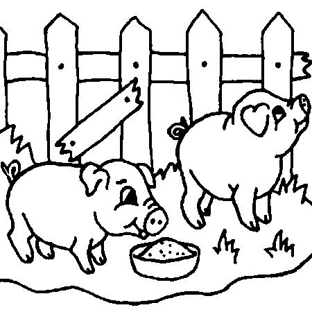 Coloriage dessiner cochon d 39 inde gratuit ligne - Dessin a imprimer cochon ...