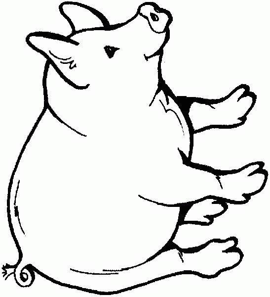 dessin cochon gratuit imprimer