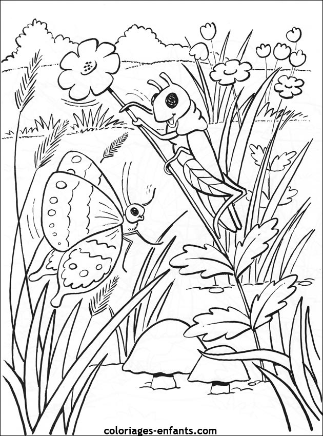 20 dessins de coloriage cocon chenille imprimer - Coloriage insecte ...