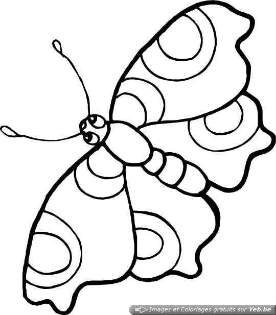 19 dessins de coloriage cocon papillon imprimer - Dessin de petit papillon ...