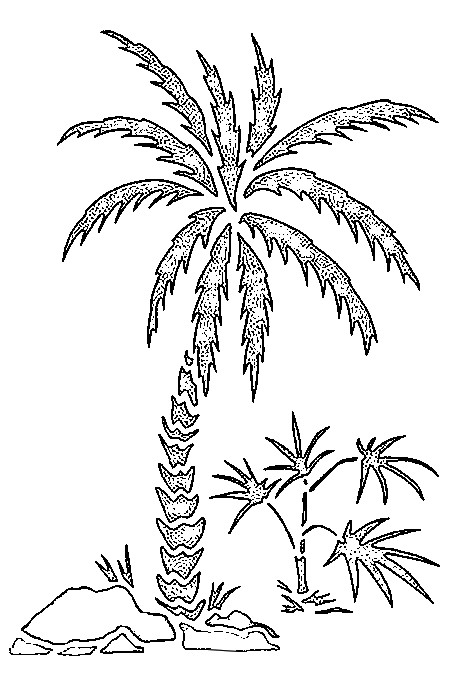 acapulco coloring pages - photo#15