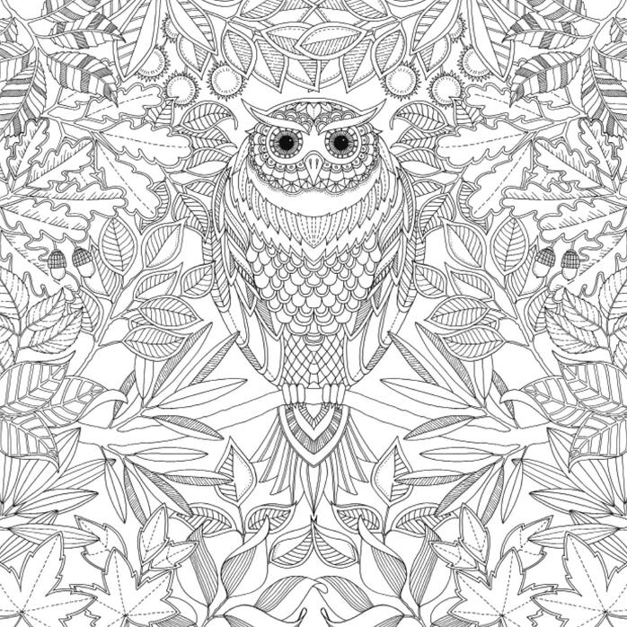 coloriage à dessiner anti stress pas cher