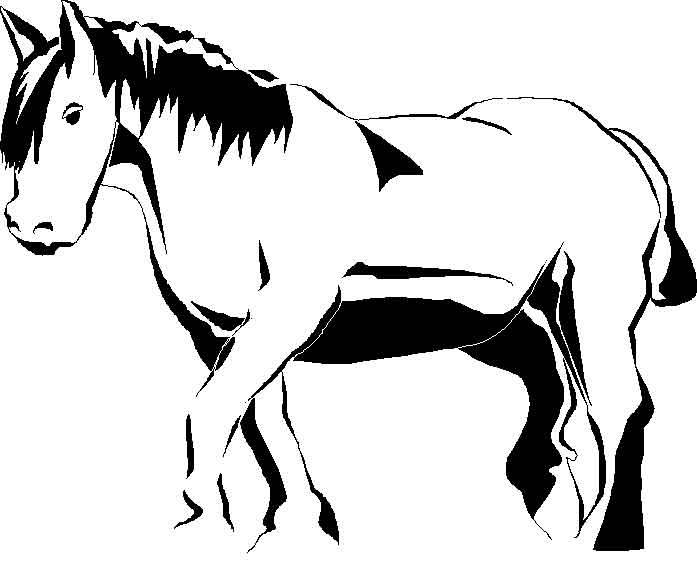 coloriage cheval qui galope - Image De Coloriage