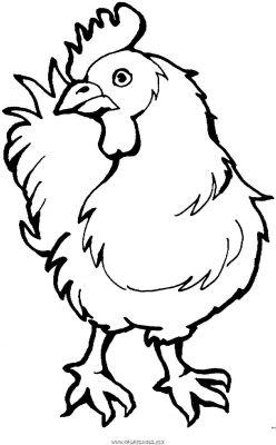 Coloriage dessiner d 39 un coquelicot - Coq a dessiner ...