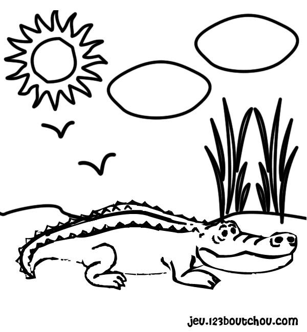 Coloriage dessiner crocodile qui pleure - Dessin anime les crocodiles ...