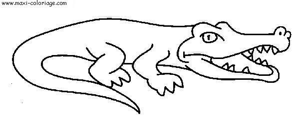 Imprimer Dessin Crocodile