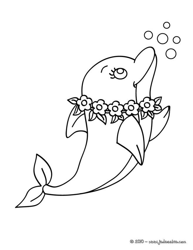 19 dessins de coloriage dauphin a imprimer tr s beau - Dauphin a dessiner ...
