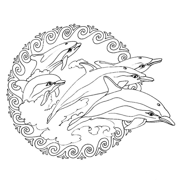 15 dessins de coloriage dauphin mandala imprimer - Mandala amour ...