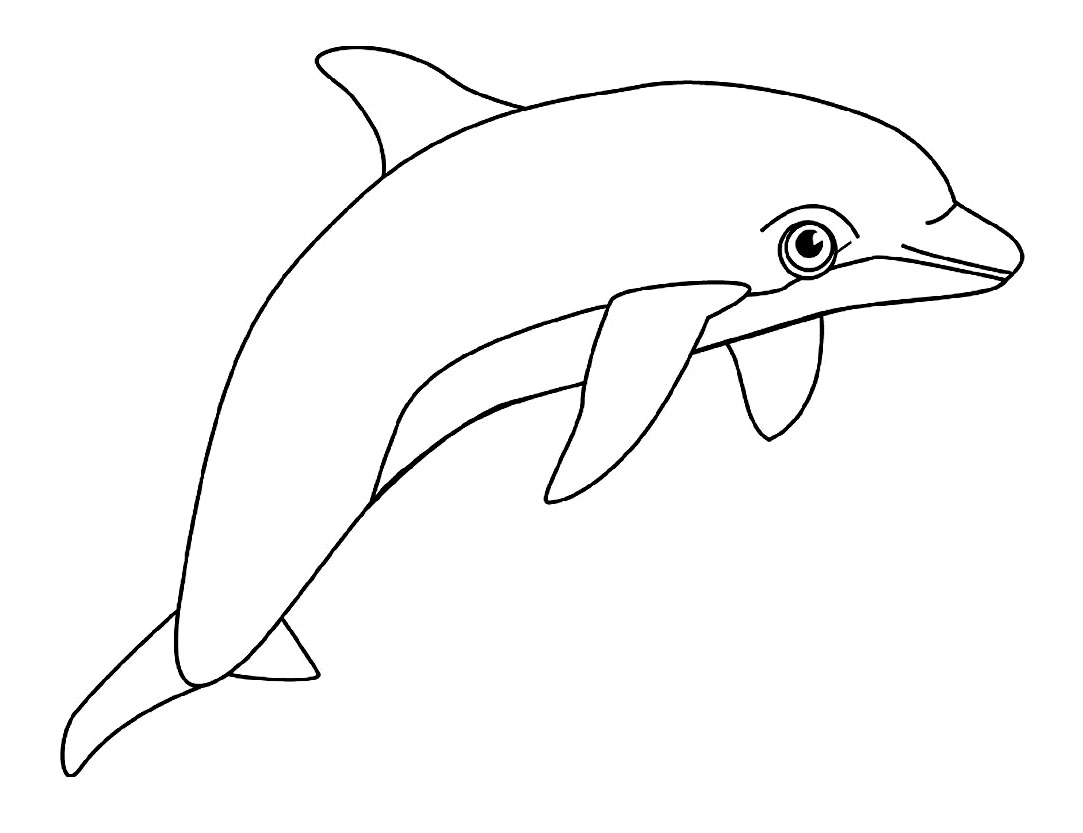 coloriage bebe dauphin a imprimer