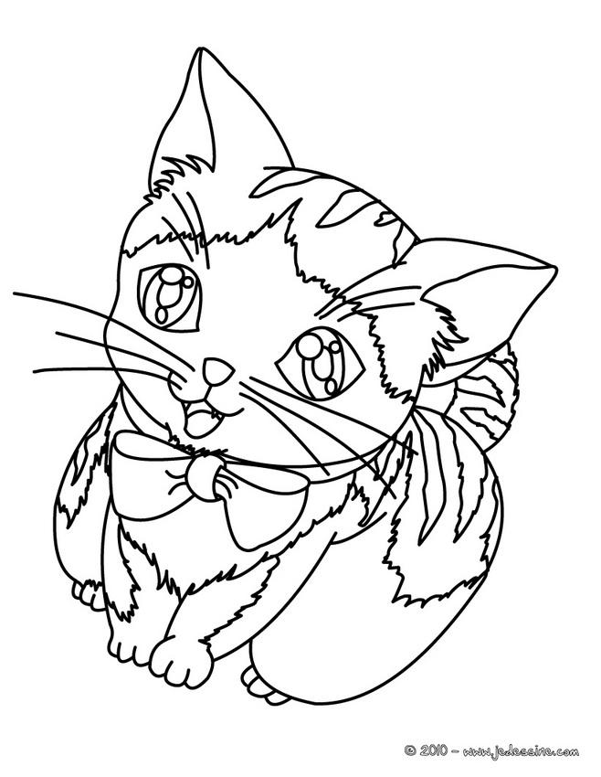 20 dessins de coloriage de f lins en ligne imprimer - Dessin a colorier en ligne ...