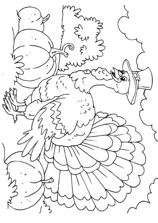 dessin diddl noel imprimer