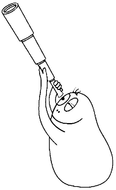 coloriage à dessiner d'un dindon