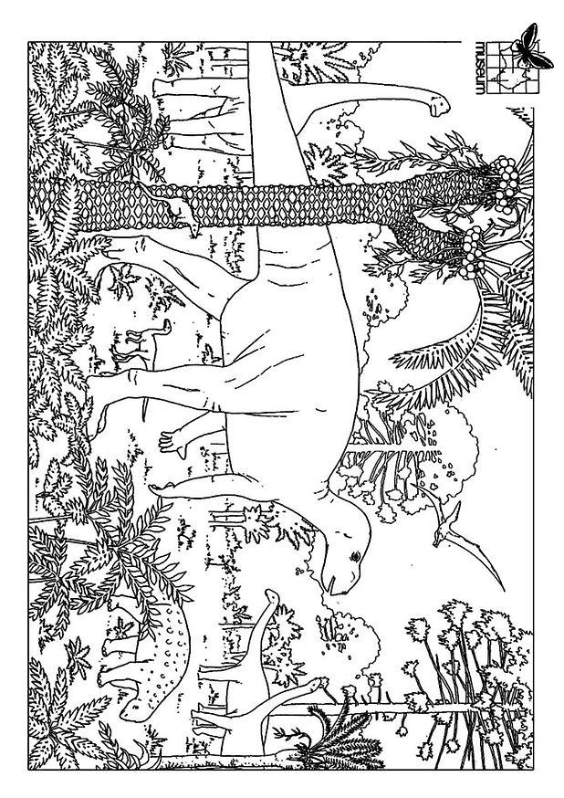 Coloriage dessiner petit dinosaure imprimer - Dessin dinosaure a imprimer ...