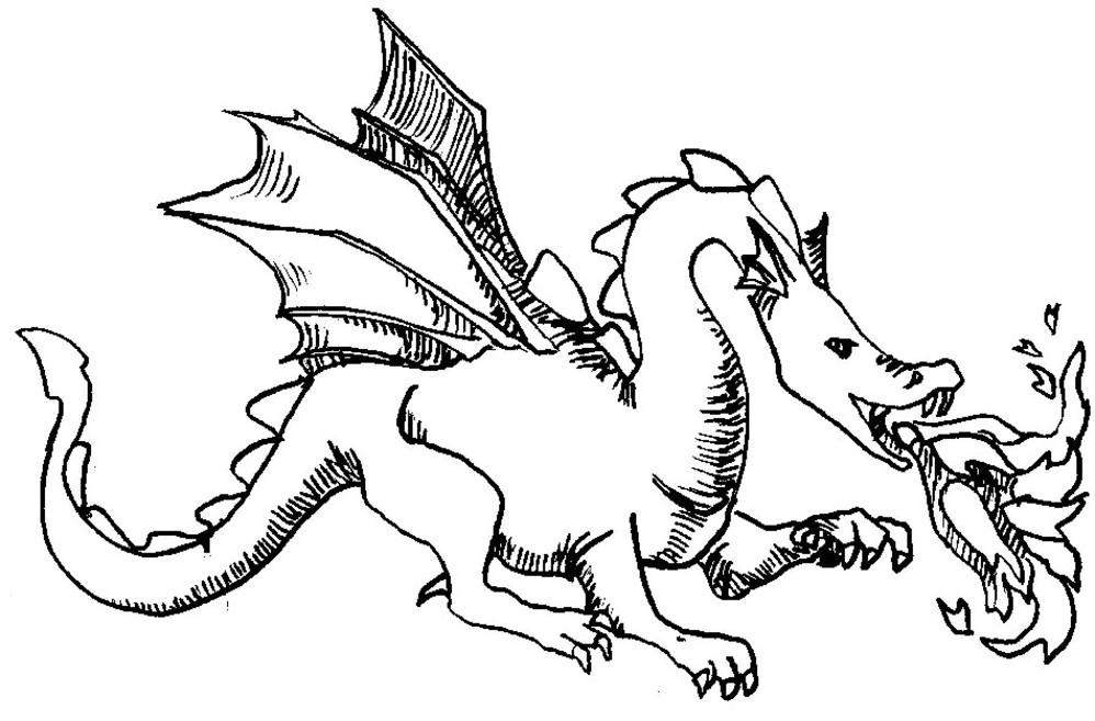 Coloriage à Dessiner Bébé Dragon Imprimer