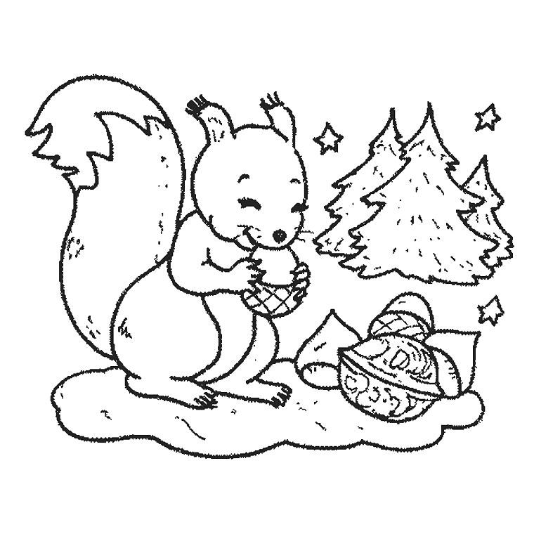 dessin à colorier un ecureuil