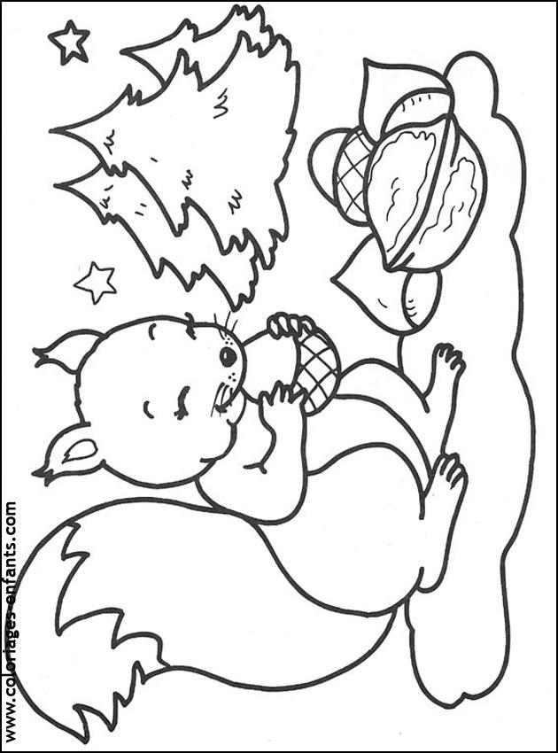 dessin à colorier ecureuil noisette