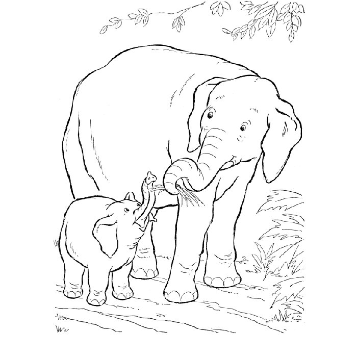 coloriage elephant dafrique