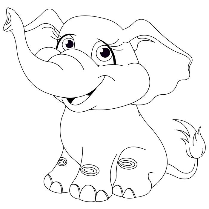 Dessin Elephant De Mer