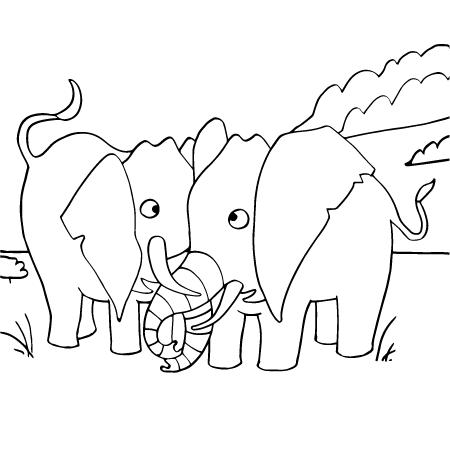 Coloriage Elmer A Imprimer.Dessin Elephant Elmer A Imprimer