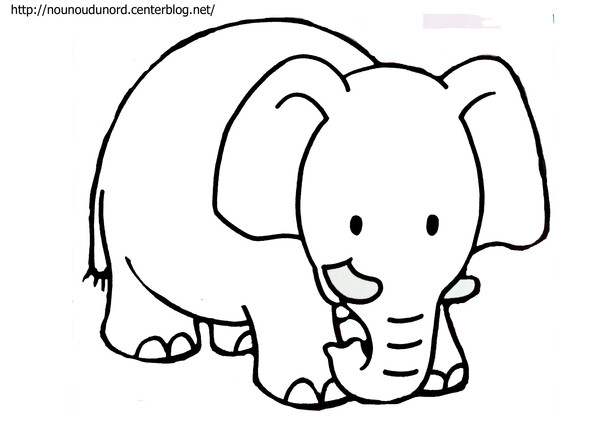 Coloriage elephant de mer - Dessin d elephant ...