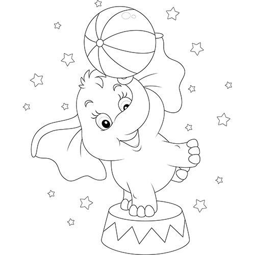 Coloriage elephant de mer - Elephant image dessin ...