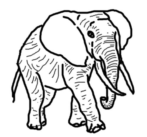 Dessin elephant d 39 inde - Coloriage elmer a imprimer ...