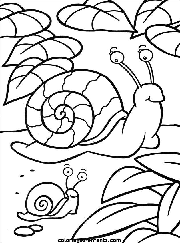 Escargot A Colorier Et Imprimer