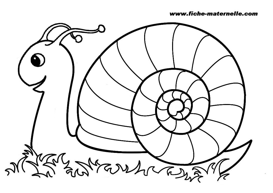 Coloriage Animaux Hugo Lescargot.Hugo L Escargot Coloriage One Piece Imprimer Et Obtenir Une