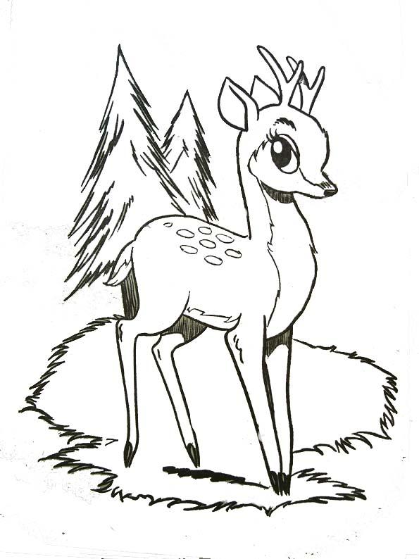 19 dessins de coloriage faon biche imprimer - Comment dessiner un cerf ...
