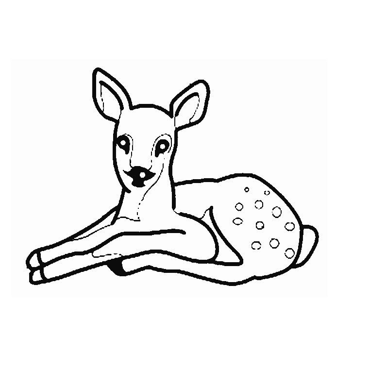 19 dessins de coloriage Faon Biche à imprimer