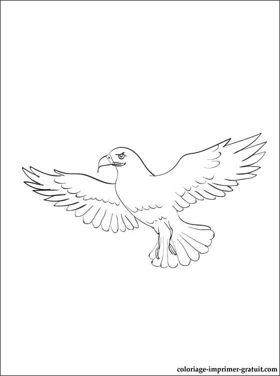 dessin à colorier oeil de faucon avengers