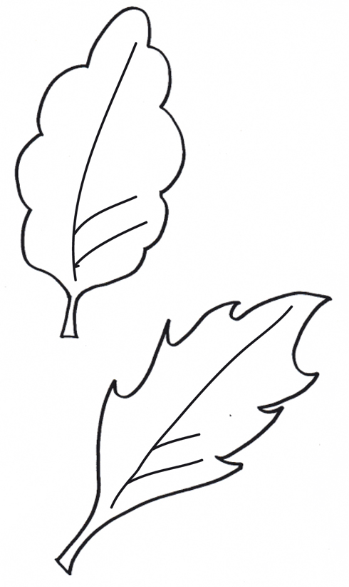 Coloriage dessiner feuille d 39 arbre - Coloriage feuille de cannabis ...