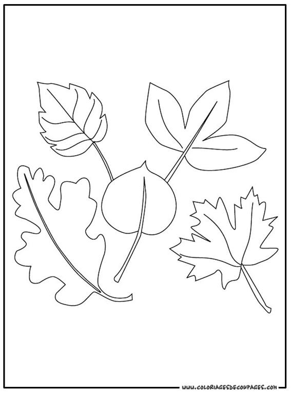 coloriage à dessiner feuille blanche