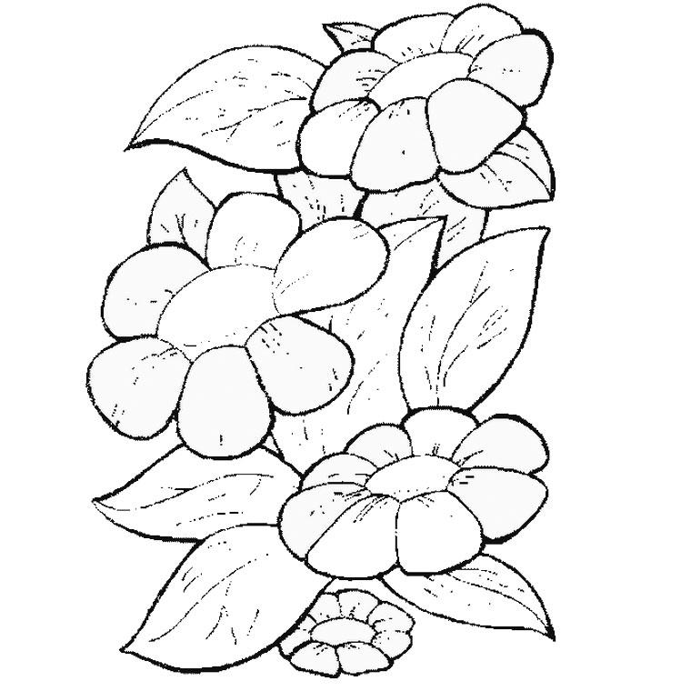 93 dessins de coloriage fleur imprimer imprimer - Fleur a imprimer ...
