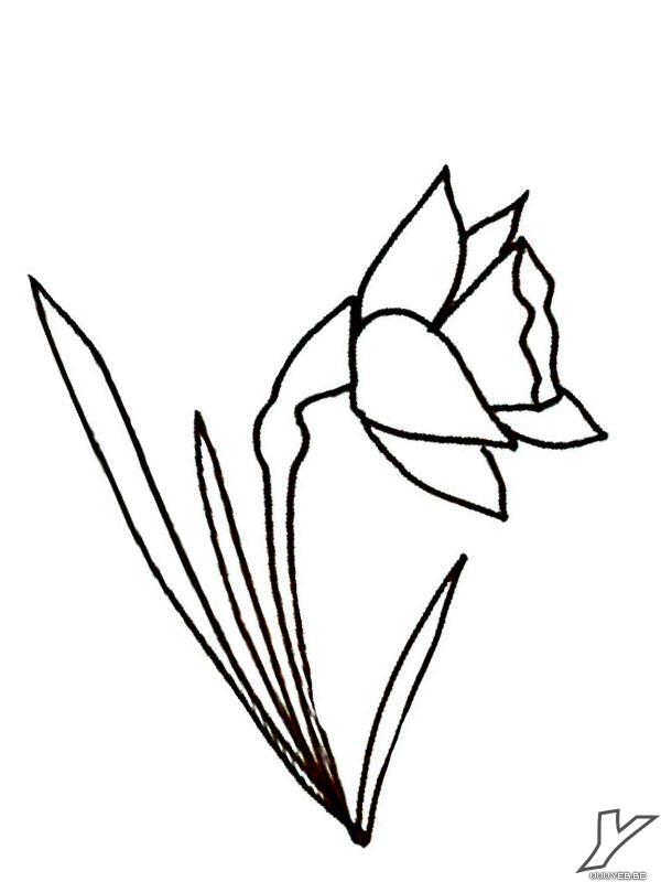 100 Dessins De Coloriage Fleur Facile A Imprimer