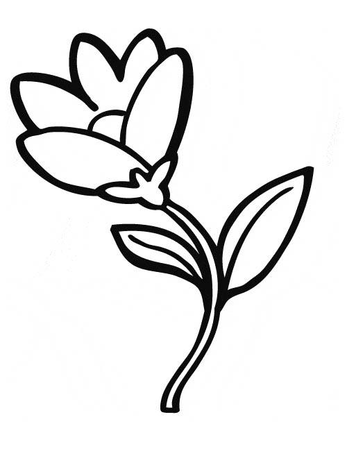 111 dessins de coloriage fleur imprimer - Dessin de fleur facile ...