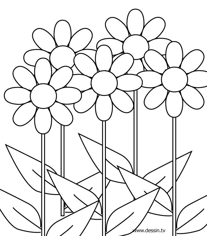 dessin à colorier a fleur