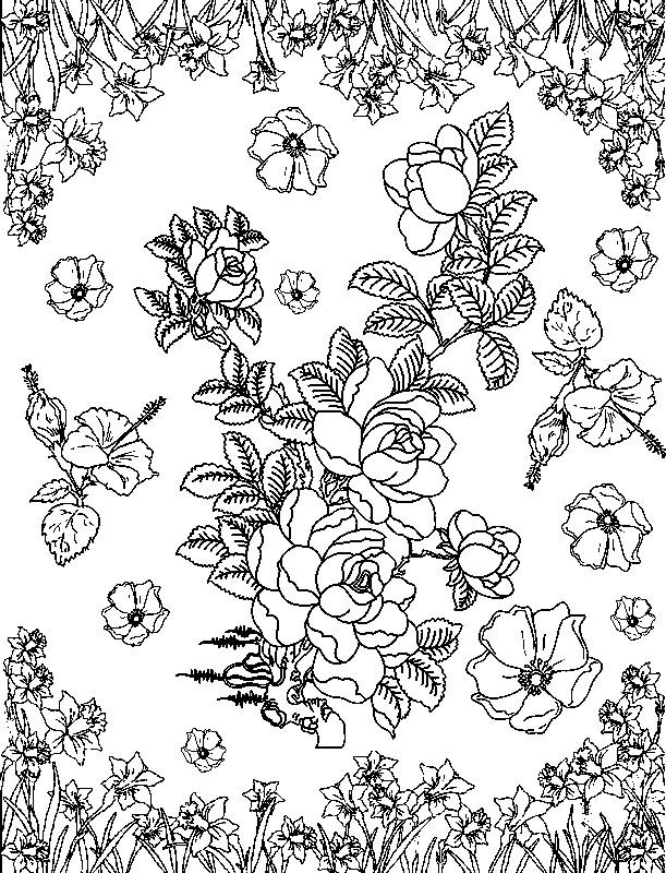 à colorier fleur