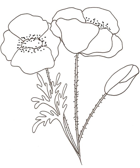 dessin à colorier mandala fleur a imprimer