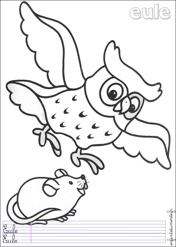 coloriage à dessiner animaux forêt maternelle