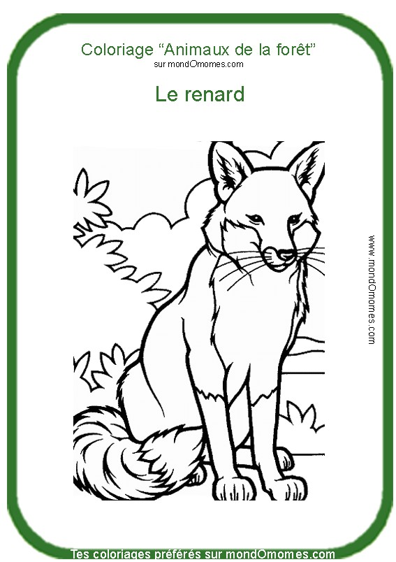 Coloriage Foret Animaux.Dessin A Colorier Foret Animaux