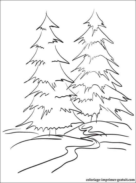 coloriage à dessiner paysage de foret