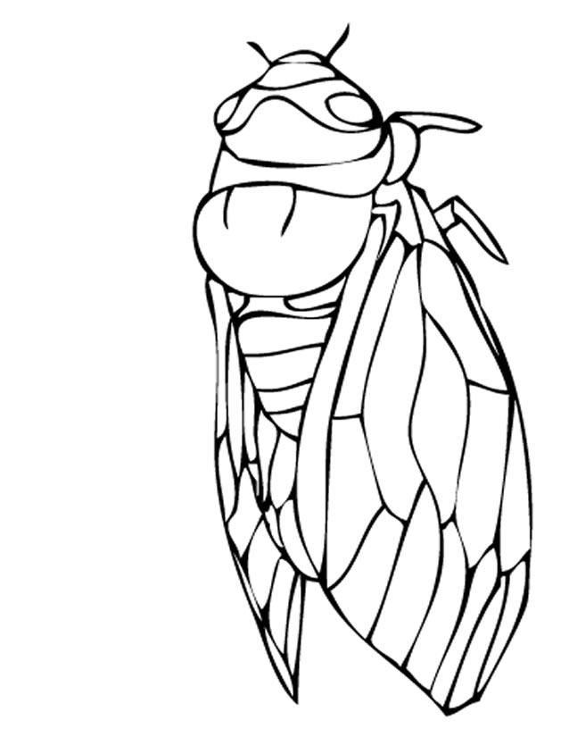 coloriage imprimer fourmis