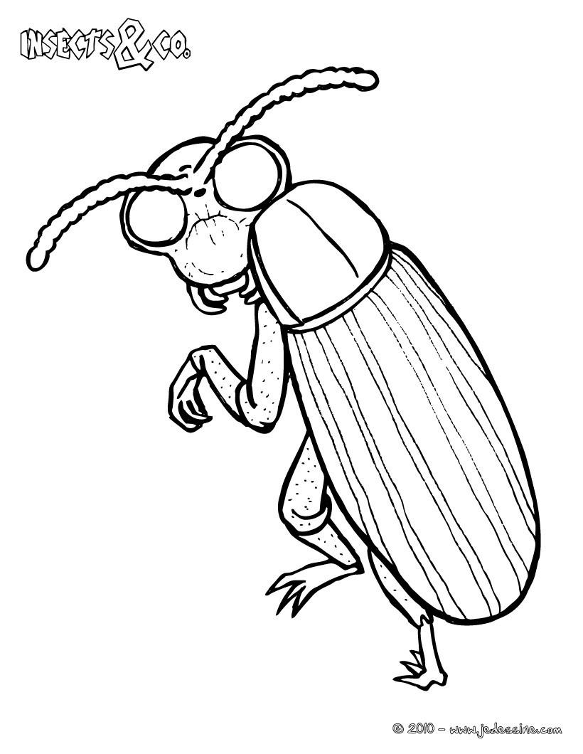 coloriage une fourmi