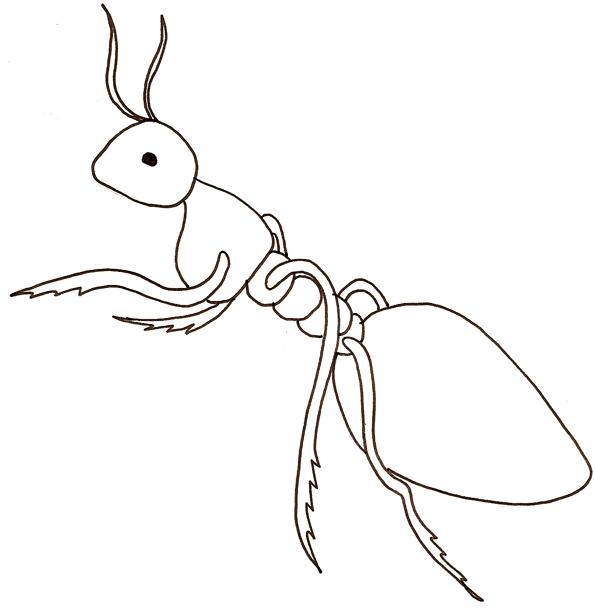 dessin à colorier l'homme fourmi